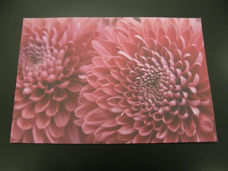 「ハルシックイ」漆喰コーティングの高機能粘着シート